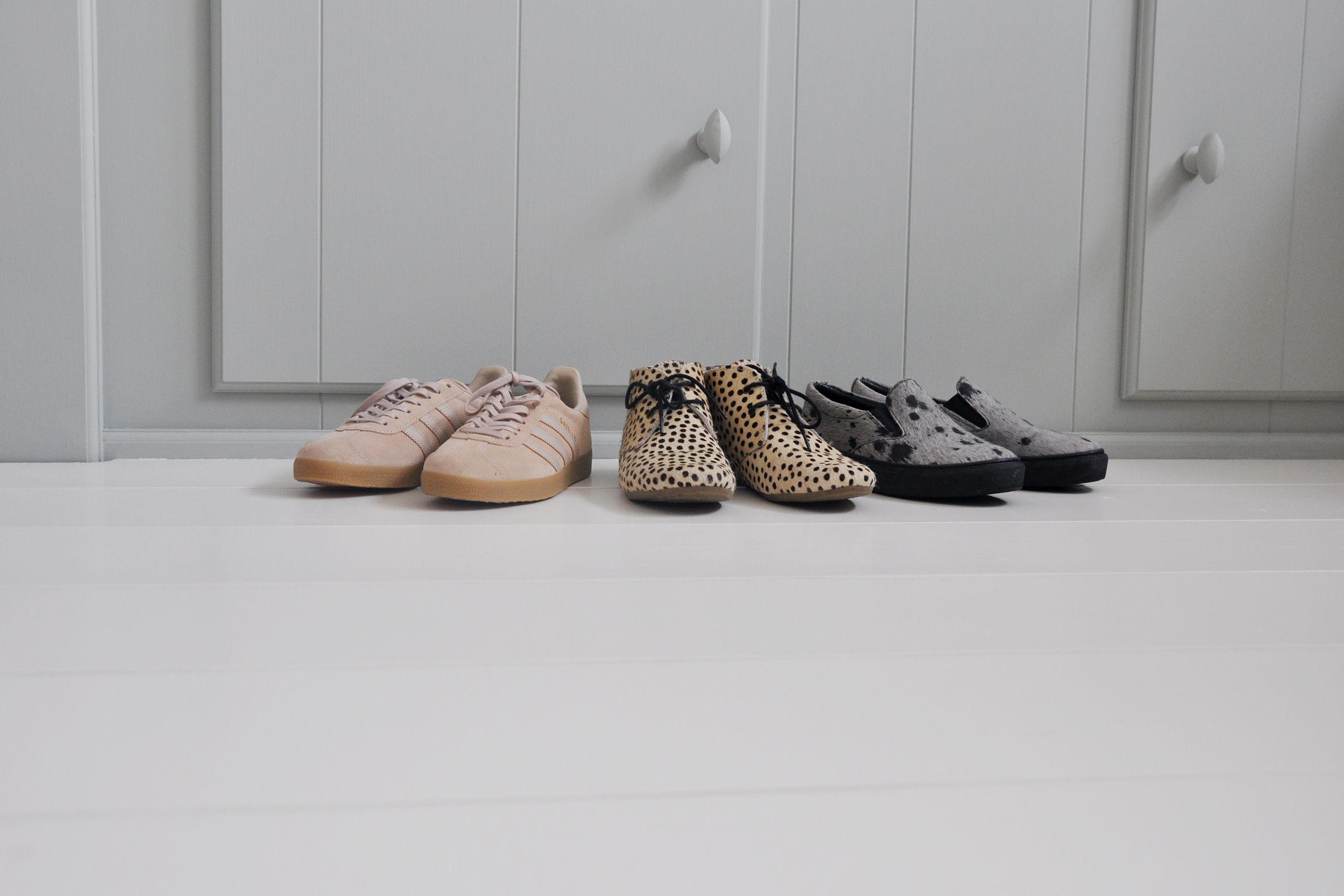 De stoute schoenen
